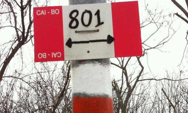 cait 801 sign