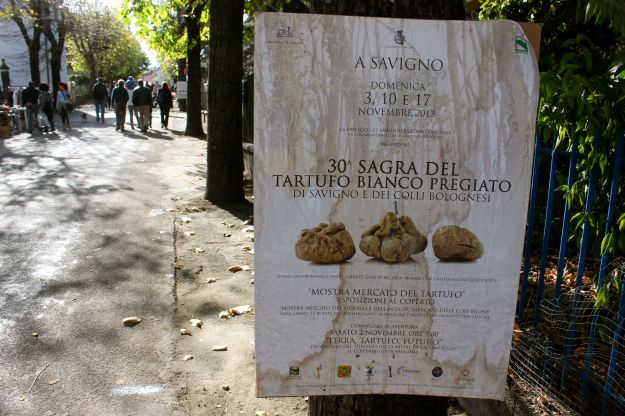 White Truffle Sagra Savigno