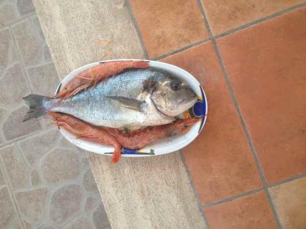 Orata Puglia