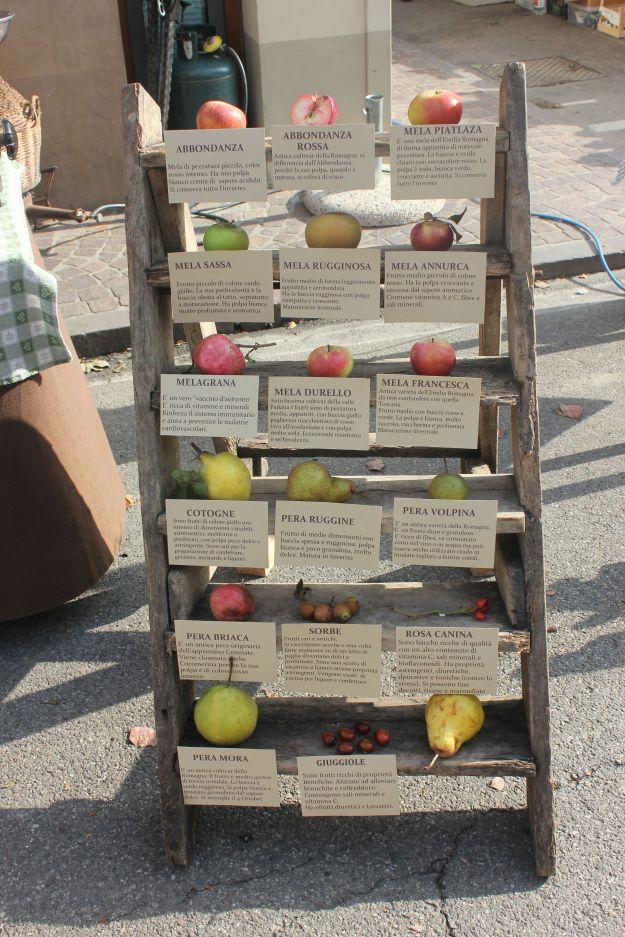 Festa dei Frutti Dimenticati